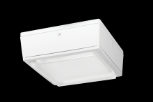 RAB Lighting VANLED40YW/480/D10 - VANDALPROOF CANOPY 40W WARM LED 480V DIM W/ DROP LENS WHITE