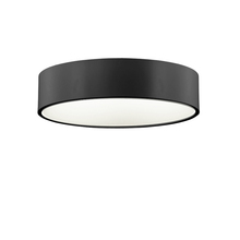 "Dainolite 825-LEDFH18-BK - 18"" LED Flush Mount, Black"