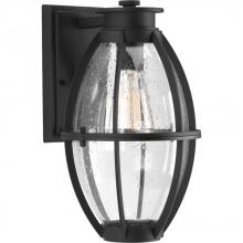 Progress P560024-031 - P560024-031 1-100W MED WALL LANTERN