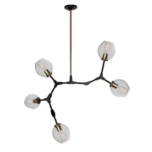 Artcraft JA14025VB - Organic JA14025VB 5 Light Chandelier